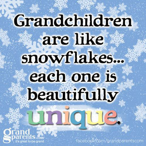 ea477148b60cf7c2510b9a31982ceed9_snowflakes-unique-fb-quote_300x300_gallery