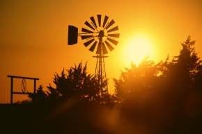 Texas Skyline
