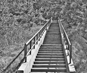 Stairs To Where? — Monochrome MadnessChallenge