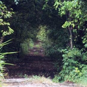 Road – My Take on aTheme