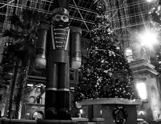 gtnutcrackertree_lindajamesphotography_bw