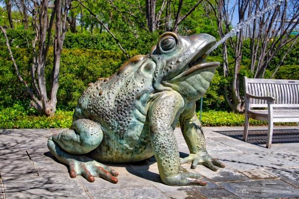FrogFountain_LindaJamesPhotography.jpeg