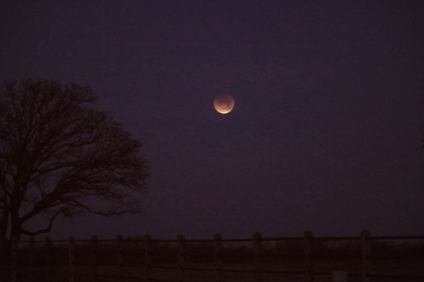 LunarEclipse_Jan31_2018_4