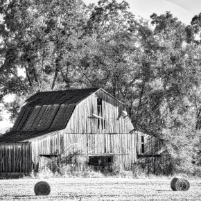 Tennessee Barn (BW)